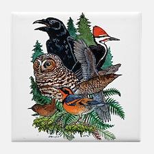 Birds of the Redwoods Tile Coaster