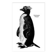Rockhopper Penguin Postcards (Package of 8)