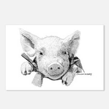 Baby Pig Postcards (Package of 8)