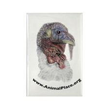 Animal Place Beautifully Colored Turkey Rectangle