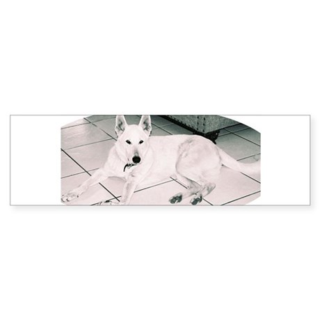 White German Shepherd Dog, to Bumper Sticker