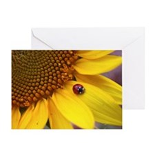 Ladybug on Sunflower Greeting Card