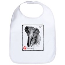"""71"" African Elephant, PAWSWeb.org Bib"