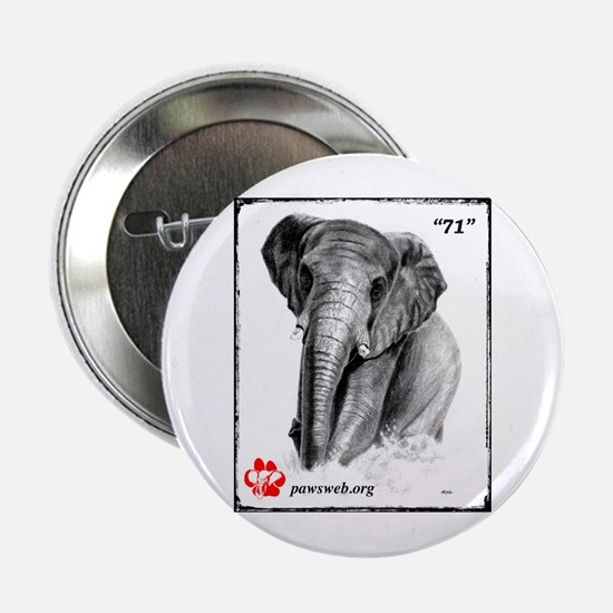 """71"" African Elephant, PAWSWeb.org 2.25"" Button"
