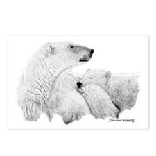 Polar Bears Postcards (Package of 8)