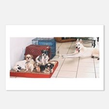 The Dog House Postcards (Package of 8)