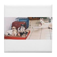 The Dog House Tile Coaster