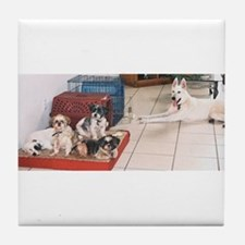 The Dog House Tile Coaster