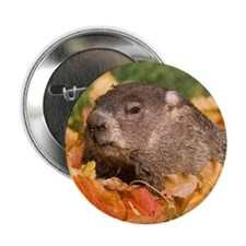 "Groundhog 2.25"" Button"