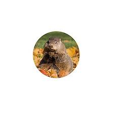 Groundhog Mini Button