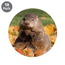 "Groundhog 3.5"" Button (10 pack)"