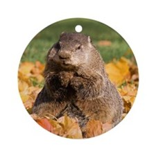 Groundhog Ornament (Round)