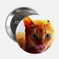 Abyssinian Button