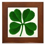 Lucky Four Leaf Clover Framed Tile