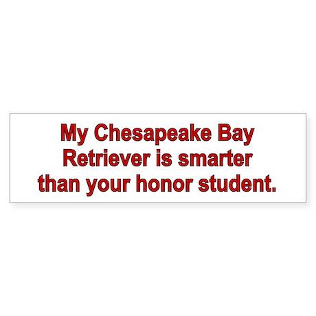 Chesapeake Bay Retriever is smart Bumper Sticker
