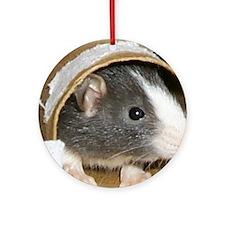 Baby Rats Keepsake (Round)