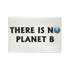 There Is No Planet B Rectangle Magnet (100 pack)