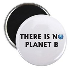 """There Is No Planet B 2.25"""" Magnet (10 pack)"""