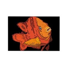 Garibaldi Fish Rectangle Magnet