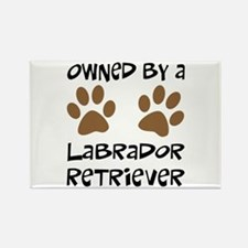 Owned By A Lab... Rectangle Magnet