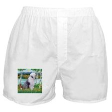 Unique Old scene Boxer Shorts