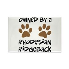 Owned By A Rhodesian... Rectangle Magnet (10 pack)