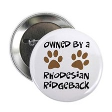 "Owned By A Rhodesian... 2.25"" Button"