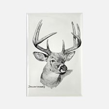 Whitetail Deer Rectangle Magnet