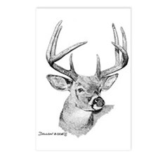 Whitetail Deer Postcards (Package of 8)