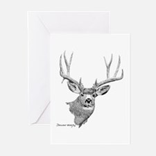 Mule Deer Greeting Cards (Pk of 10)
