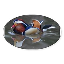 Mandarin Duck Oval Decal