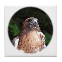 Redtailed Hawk Tile Coaster