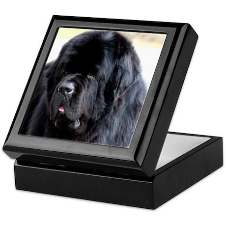 Newfie Newfoundland Dog Keepsake/Jewelry Box