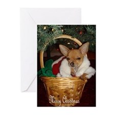 Kitty Present Merry... Greeting Cards