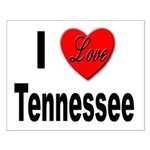 I Love Tennessee Small Poster
