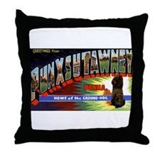 Punxsutawney Pennsylvania Groundhogs Day Throw Pil