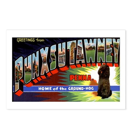 Punxsutawney Pennsylvania Groundhogs Day Postcards
