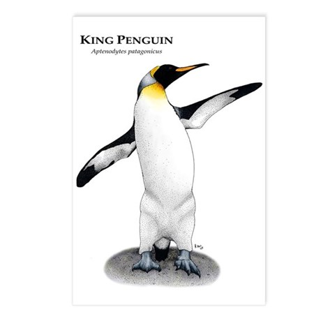 King Penguin Postcards (Package of 8)