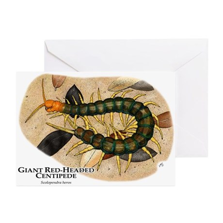 Giant Red-Headed Centipede Greeting Cards (Pk of 1