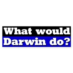 What Would Darwin Do Bumper Bumper Sticker