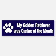 Golden Retriever of the Month Bumper Bumper Bumper Sticker