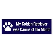 Golden Retriever of the Month Bumper Bumper Sticker