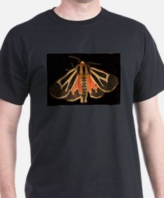 Tiger Moth T-Shirt