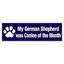 German Shepherd of the Month Bumper Bumper Sticker