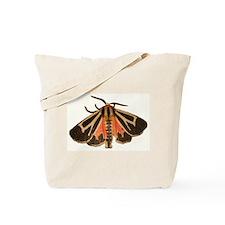 Tiger Moth Tote Bag