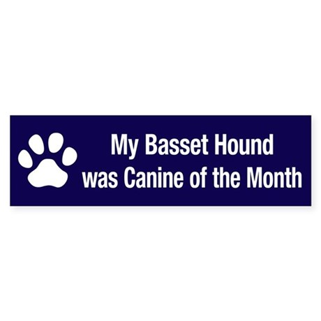 Basset Hound of the Month Bumper Sticker