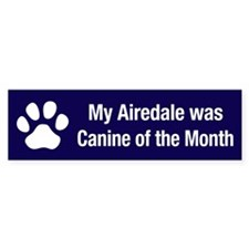 Airedale of the Month Bumper Bumper Sticker