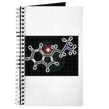 DMT molecule Journal