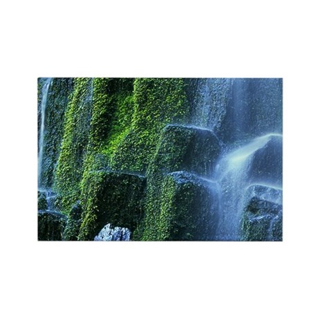 Proxy Falls Rectangle Magnet (100 pack)