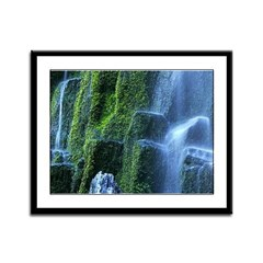 Proxy Falls Framed Panel Print